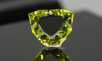 Fancy Intense Yellow Portrait Cut 0.54 carat